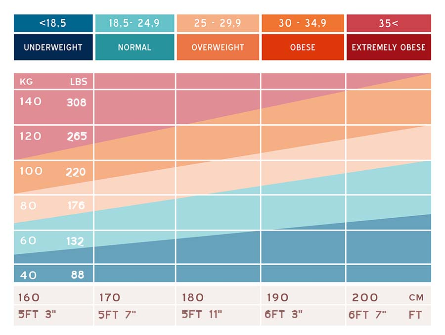 BMI chart BMI Index